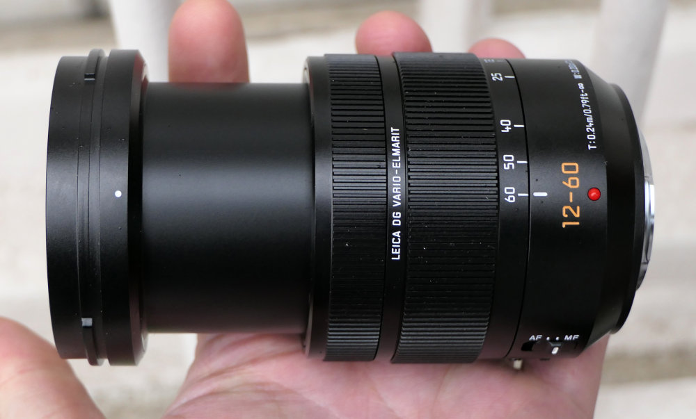 Panasonic Leica 12 60mm (7)